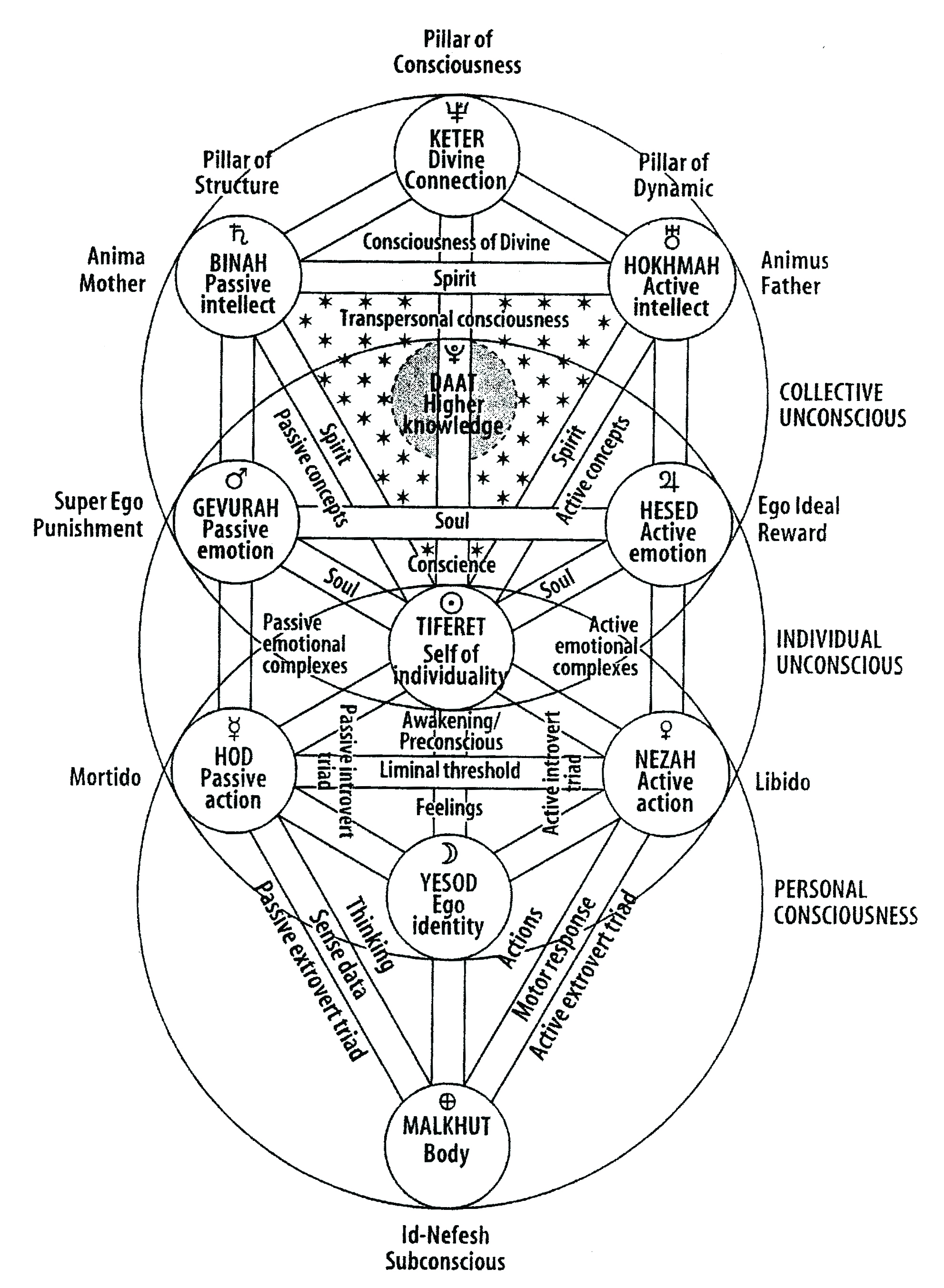 The Kabbalistic Tree Of Life Watkins Mind Body Spirit Magazine One may view the tree of life as representing a fundamental pattern of reality as it maps the transformation that kabbalah holds is the foundation of all existence. watkins mind body spirit magazine