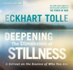 Deepening The Dimension Of Stillness: A Retreat on the Essence of Who You Are by Eckhart Tolle, published by Sounds True, available on DVD & CD.