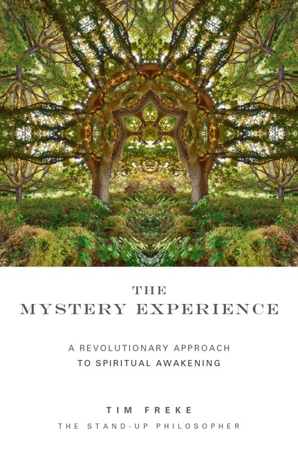 THE MYSTERY EXPERIENCE: A Revolutionary Approach to Spiritual Awakening by Tim Freke, published by Watkins Publishing, paperback (333 pages)
