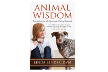 Meet the Author: Linda Bender