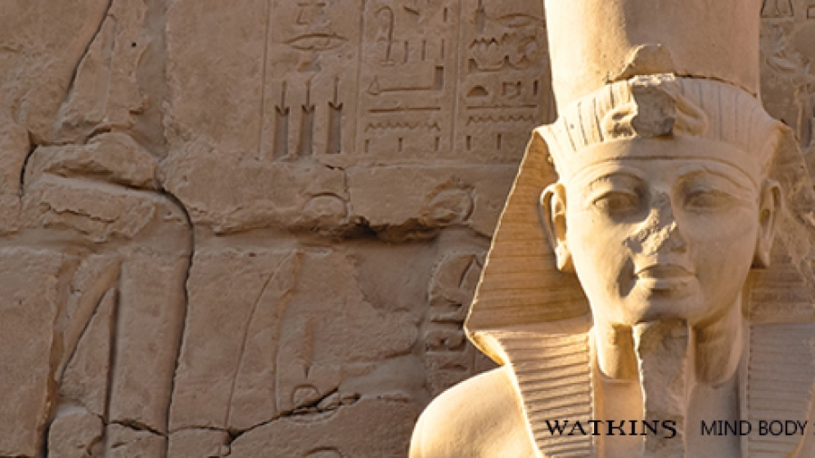 Hatshepsut's Rise to Power in Ancient Egypt