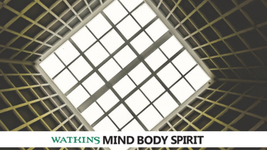 Watkins MBS blog (3)